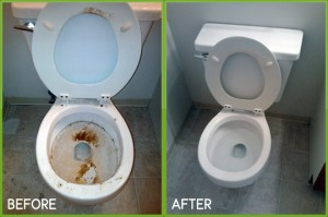 move out toilet cleaning